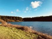 Whistlandpound