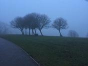 A foggy & a hazy sunshine day