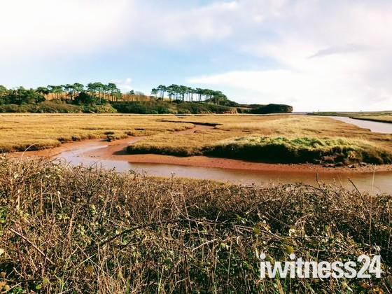 River Otter view at Budleigh