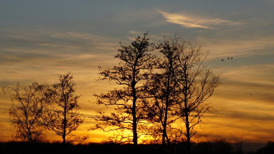 zonsondergang met enige sluierbewolking