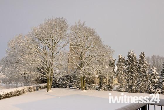 Snowy Cretingham