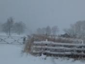 A snowy February day