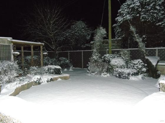 Snow in Dereham