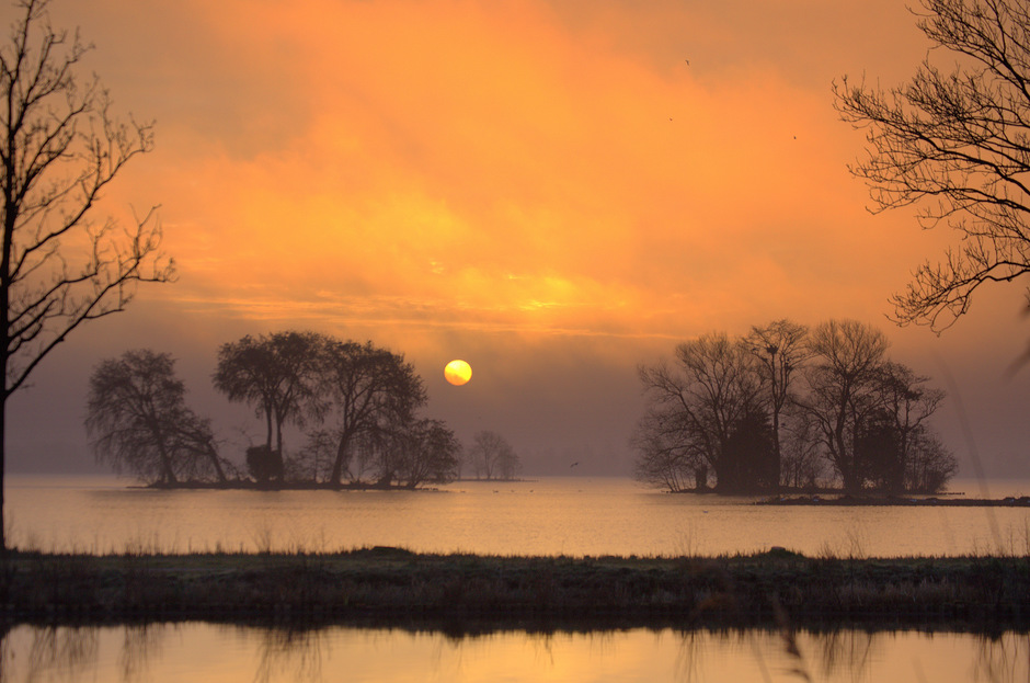 De Zonsopkomst in het Reeuwijkse plassen gebied