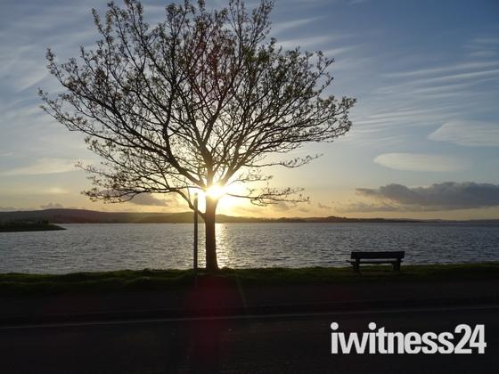 Evening sun over the Exe Estuary