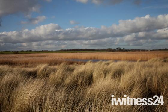 Beautiful Waveney