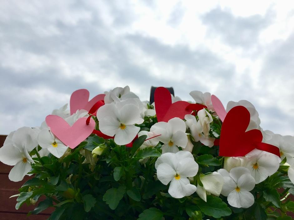 Hartjes en bloemen