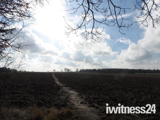Norfolk paths