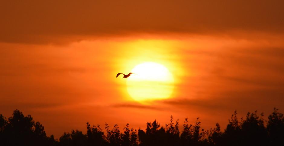 zonsopkomst met klein wolkje