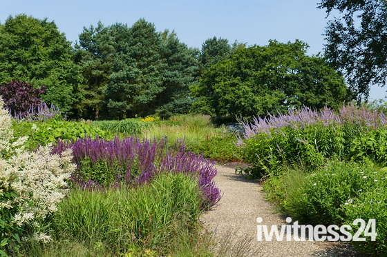FULL OF COLOUR AT PENSTHORPE NATURAL GARDENS