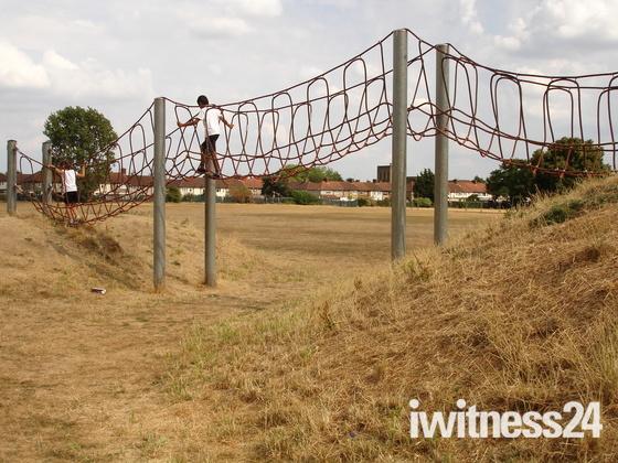 Valence Park or the Serengeti?