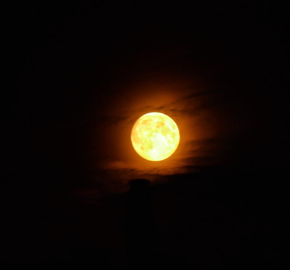 Bijna volle maan..