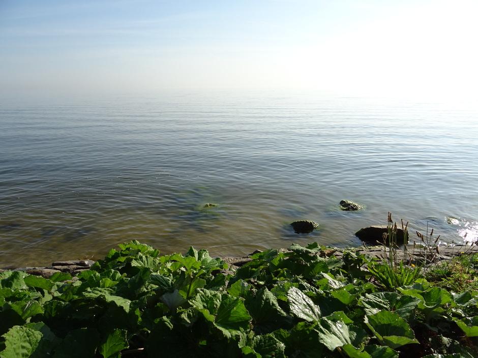 IJsselmeer om half negen vanmorgen