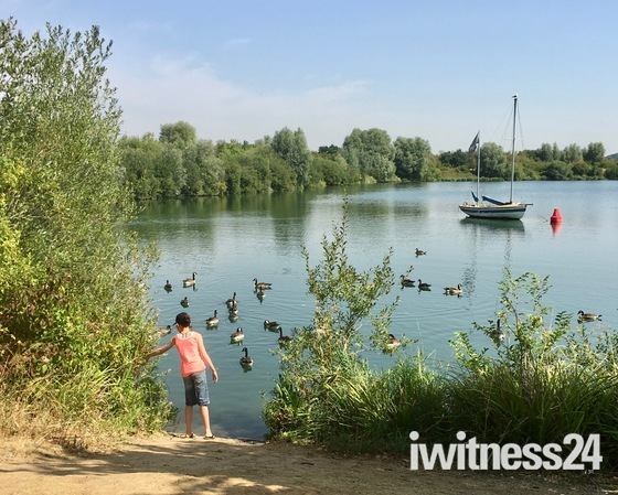 Cooling off in the heatwave at Fairlop Waters