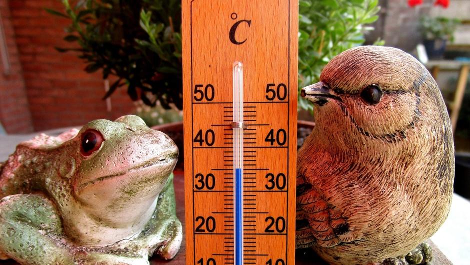 Om half 5 is het 35 graden.