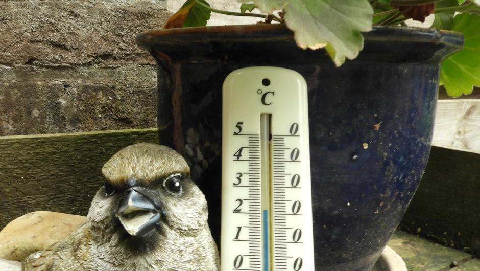 Voorlopig laatste dag met 20+ graden