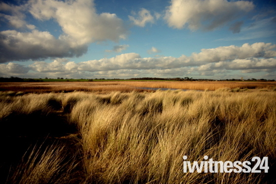 Weekly Challenge - Suffolk Landscapes