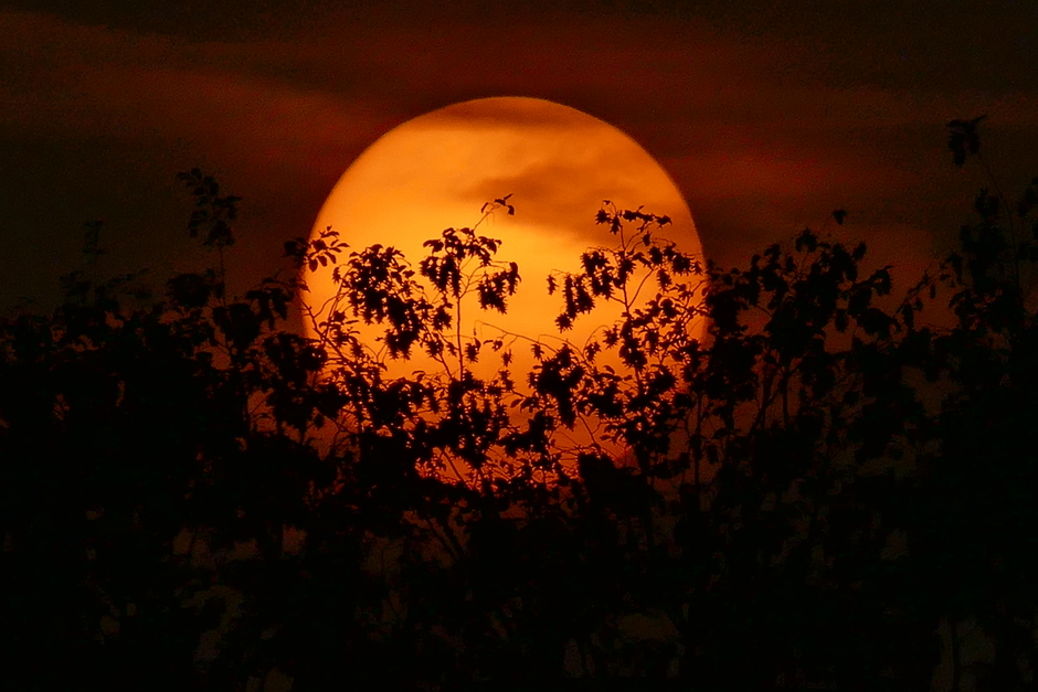 Zonsondergang in Schinveld