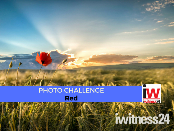📸 PHOTO CHALLENGE: Red 📸