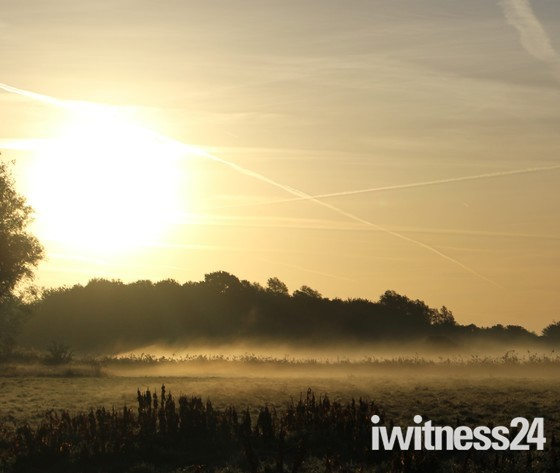 Ludham frosty morning