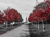 Northernhay Gardens in autumn.