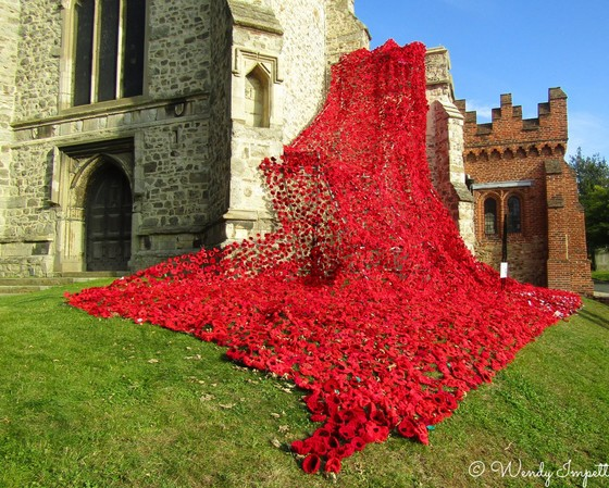 some gave all, all gave some.. poppy display