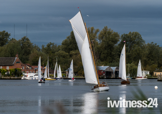 Sails on the Yare