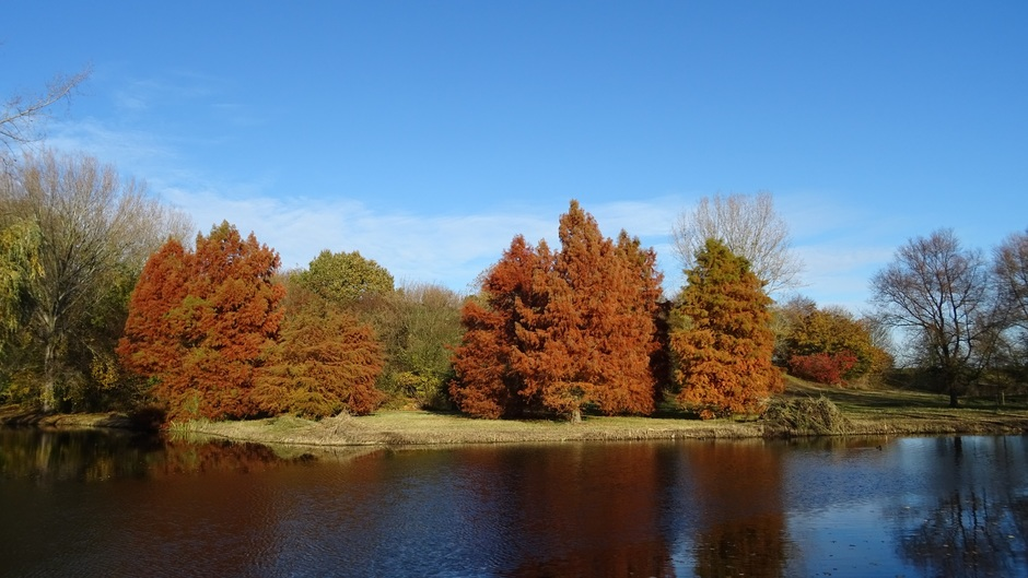 felle herfstkleuren