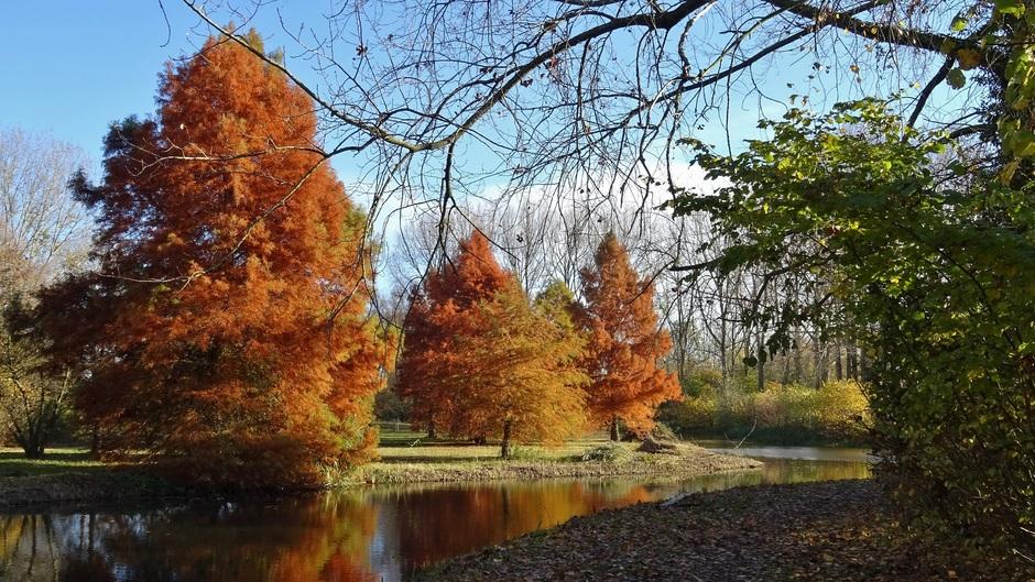 de natuur kleurt