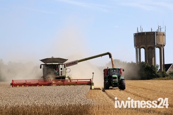 The before...Water Tower field Hethersett, feeding the population in August 2013
