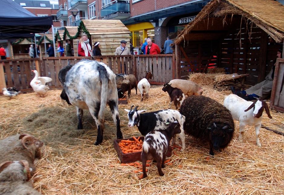Op de kerstmarkt in Huizen,Noord-Holland