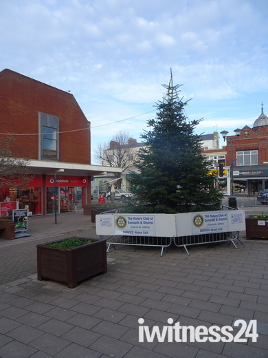 Christmas tree in Exmouth