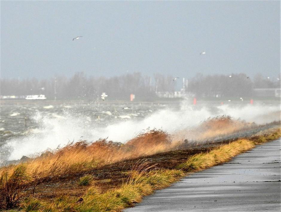 Storm aan het IJsselmeer.