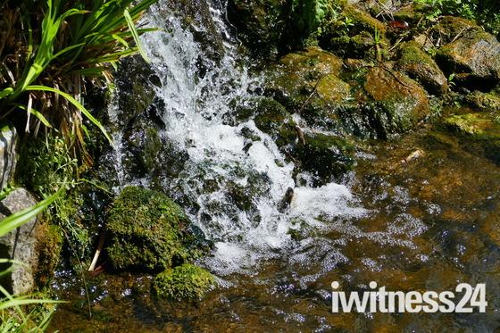 WATER. BUBBLES