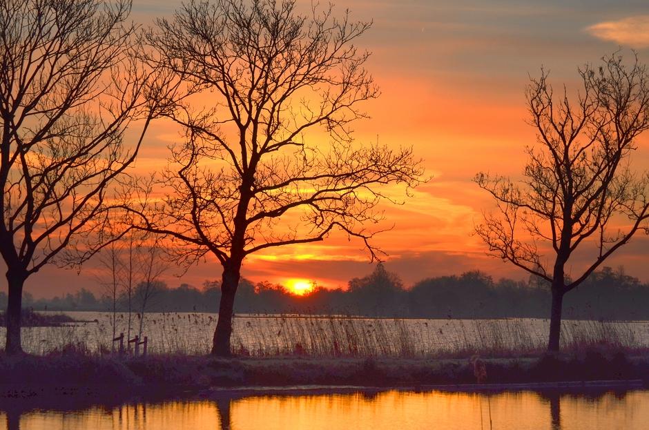 Een koude/kleurrijke Zonsopkomst op Zaterdag 19 Januari!