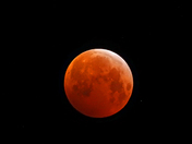 Blood red moon Monday 21st January
