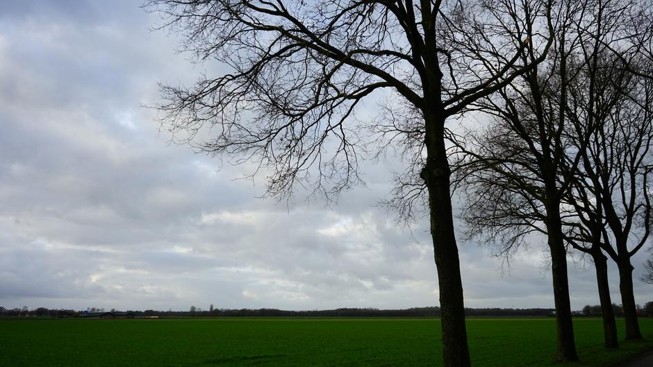 Grijs en bewolkte dag