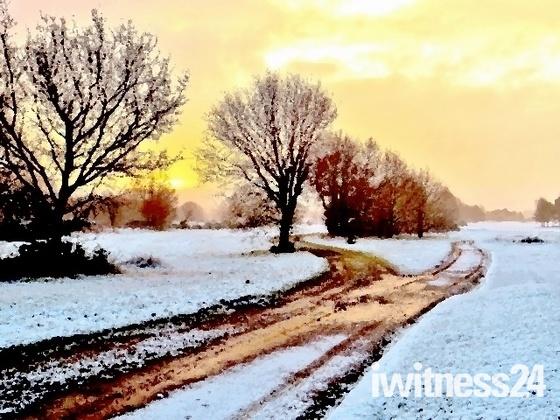 snowfall at dawn