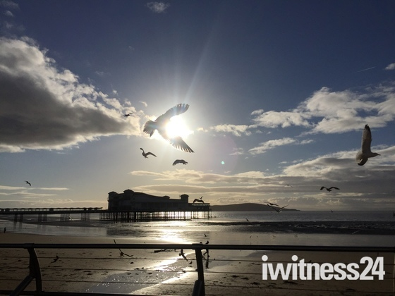 SunGull over Weston