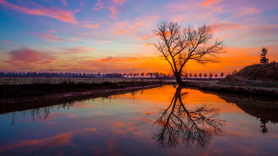 Rode zonsopkomst in het rivierengebied