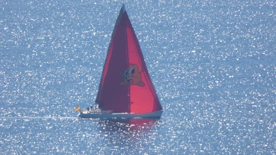 Zeilweer bij een rustige Middellandse zee. 20 graden.