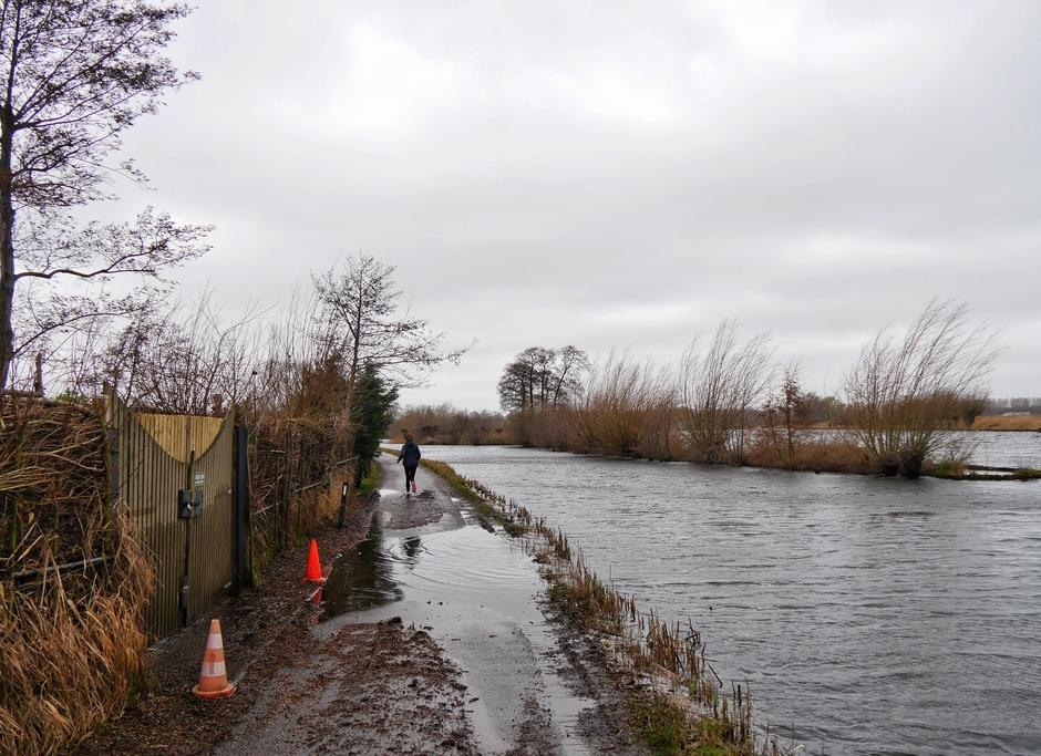 Hoge waterstand in Reeuwijk