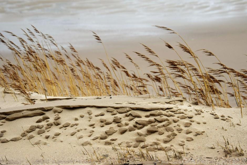 veel wind aan zee
