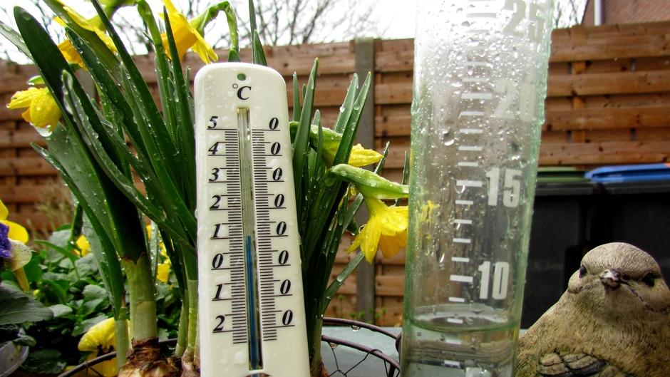 10 graden en bijna 8 mm regen