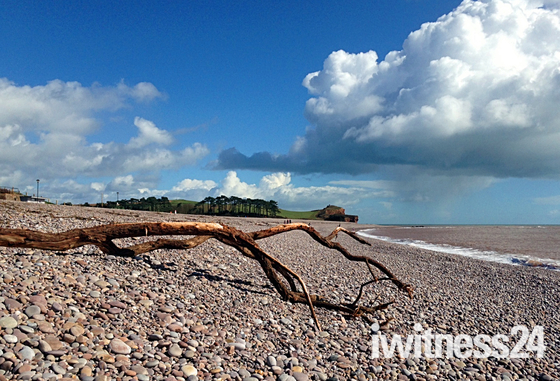 Flotsam on Budleigh beach