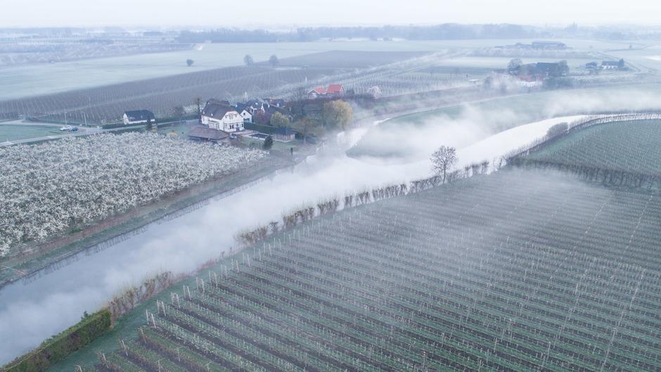 Mist in het Rivierengebied