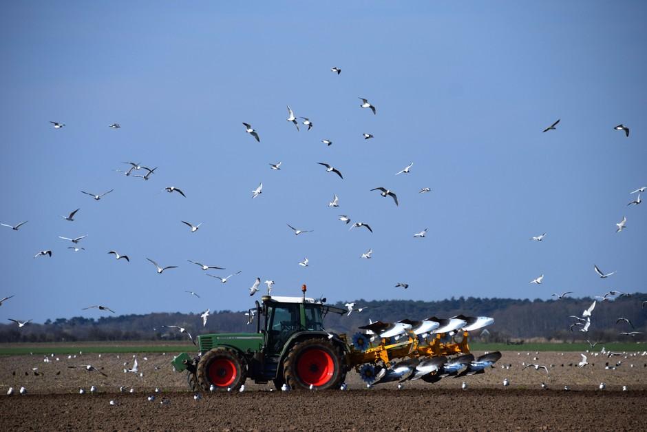 de boer gaat aan het werk