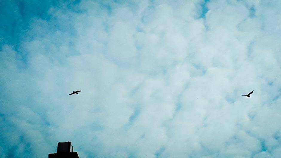 Oude Wetering  11.00 uur een grote wolken deken