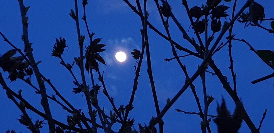Heldere maan tussen de wolken