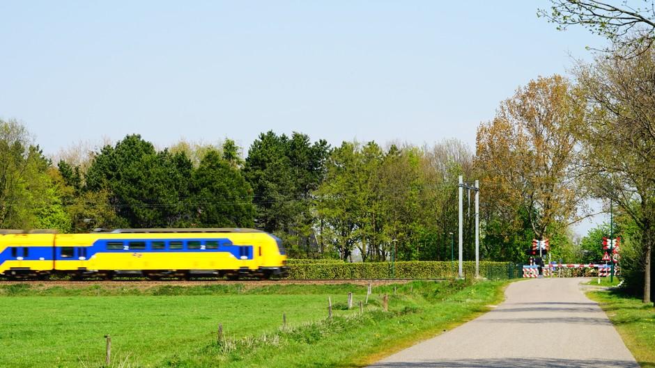 Volop zon met trein op snelheid